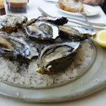 Fresh Tasmanian oysters naturelles