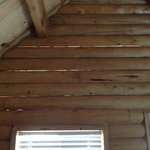 Hey look - more holes in the cabin walls!