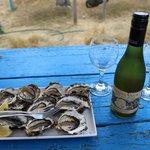 Fresh oysters (Freycinet Marine Farm)