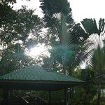 Sepilok Jungle Lodge