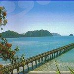 Kea Creations Waihau Bay