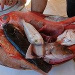z tego zestawu świeżych ryb wybieramy