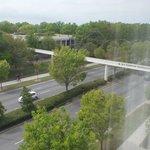 Foto de SpringHill Suites Norfolk Old Dominion University
