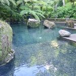 Holy Water Pool