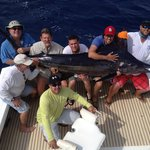 Sea Horse Private Charters
