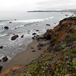 Look for the tide pools