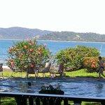 View from bar overlooking pool & ocean