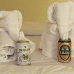 Towel folding par-exellence.  I rewarded each with a beer!