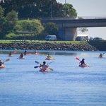 Kayaking in Currumbin creek