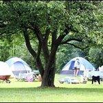 Campground at WVA