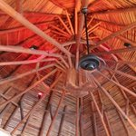 Beautiful vaulted ceiling in the Round Room