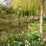 giverny. not in book at end of April.