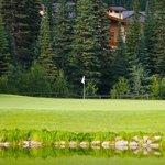 Golf Coarse