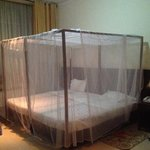 Mosquito net protected bed