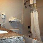 Bathroom, curved shower rod