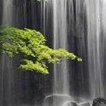Tatsuzawa Fudo no Taki Waterfall