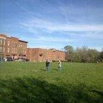 Grassy field across street