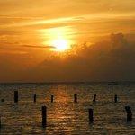Blue Angel- Beautiful sunset fr