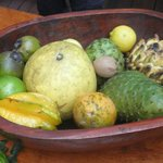 The fruit that we sampled at the Exotic Fruit Farm.