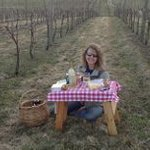 Our beautiful vineyard is a great place to bring a picnic lunch!