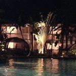 Nighttime Swimming