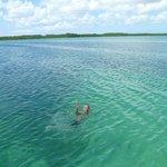 Excelente para nadar y hacer snorkel