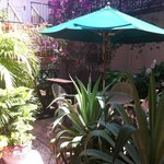 Lush, tropical patio area, relax on our imported Canadian swing set... PARADISE AWAITS