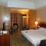 standard room living area