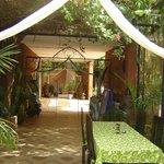 Photo of les jardins de koulouba