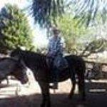 Allen Smallacombe Trail Rides