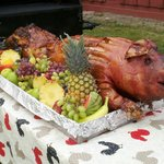whole hog ready to party