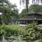 Nanhu Garden