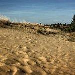 Carberry (Spirit Sands) Desert