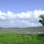 Aganhao Island