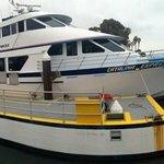 the Catamaron