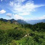 Xian'an Stone Forest