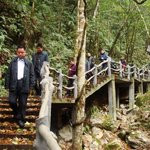 Wuyanling National Nature Reserve of Zhejiang