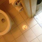 flooded toilet