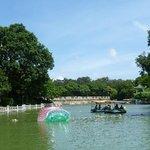 Chaqu Park