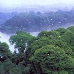 Jiangkou Bird Island