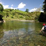 Wiltons World of Fly Fishing