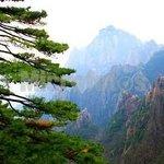 Xuanwei East Mountain