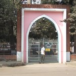 Taishan College