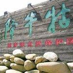 Guniujiang Scenic Resort