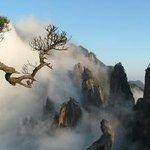 Xuejiagang Site
