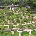 Anshan Forest Park