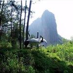 Tuanbowa Nature Reserve