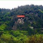 Longshan Academy
