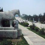 Zhuque Forest Park