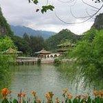 Nanyang Forest Park